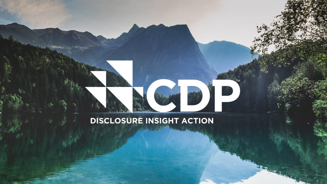 CDP Europe teams up with Grayling Austria